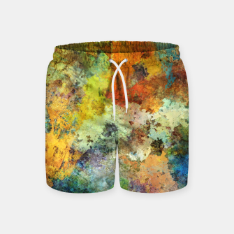 Thumbnail image of Audible stone Swim Shorts, Live Heroes