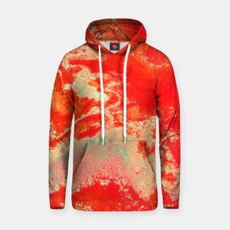 Thumbnail image of Sea Green and Coral Hoodie, Live Heroes