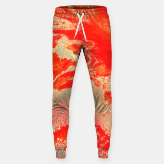 Thumbnail image of Sea Green and Coral Sweatpants, Live Heroes