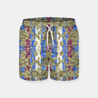 Thumbnail image of Ornament Striped Textured Colored Pattern Swim Shorts, Live Heroes