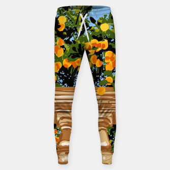 Thumbnail image of No matter what happens in the outside world Sweatpants, Live Heroes
