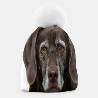 Thumbnail image of Labrador Beanie, Live Heroes
