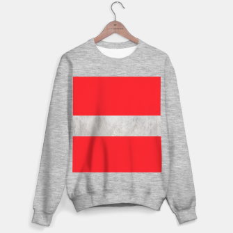 Thumbnail image of Gray textured stripe on red Sweater regular, Live Heroes